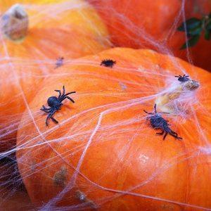 feestartikelen-plastic-spinnen