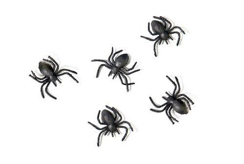 plastic-spinnen