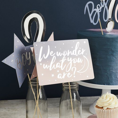 babyshower-decoratie-gender-reveal-photobooth-props-we-wonder-what-you-are-3