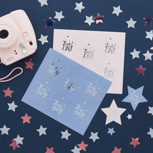 babyshower-decoratie-team-boy-team-girl-stickers-we-wonder-what-you-are-3