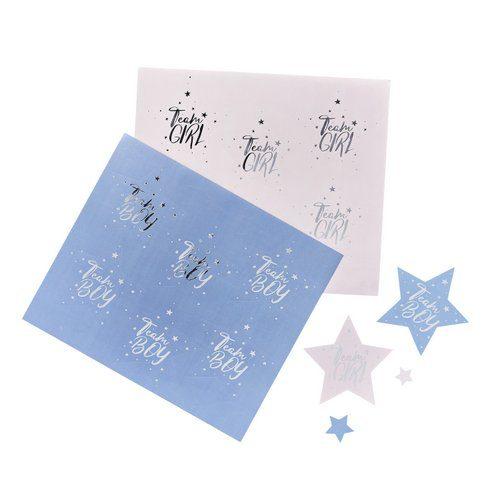 babyshower-decoratie-team-boy-team-girl-stickers-we-wonder-what-you-are