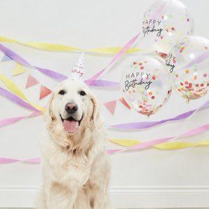 feestartikelen-huisdier-verjaardagskit-mix-it-up-2