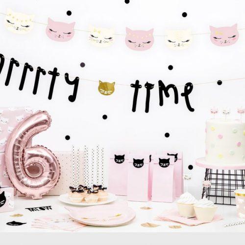 feestartikelen-papieren-bordjes-meow-party-3